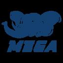 MEGA Esports